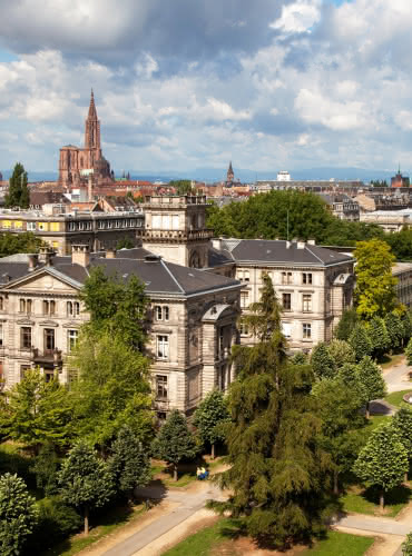 Neustadt - Strasbourg