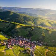 Vue sur le Niedermorschwihr - Route des Vins d'Alsace