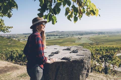 Balade dans le vignoble alsacien
