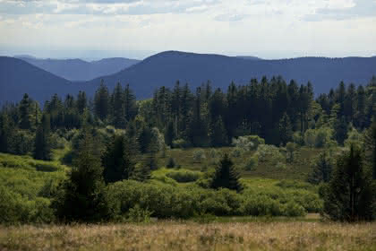 La tour du Club Vosgien, point culminant du Champ du Feu