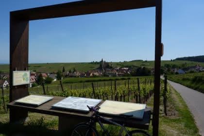Vue sur le village de Hunawihr - Crédit photo : Office de Tourisme du Pays de Ribeauvillé et Riquewihr