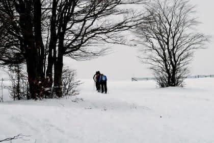 Photo sortie raquettes à neige Markstein crédit : Vincent Schneider