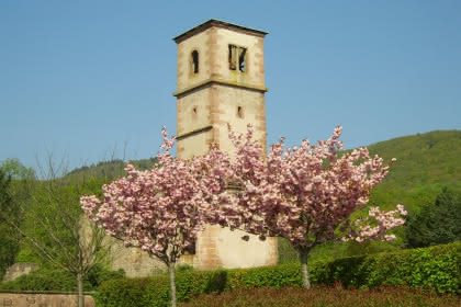 Les ruines de l'église au printemps ©Christelle CLAERR