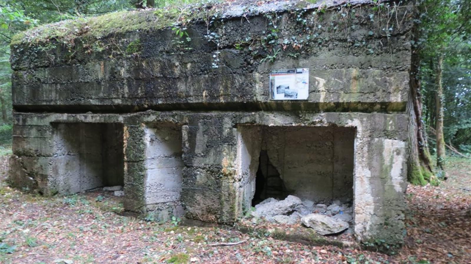 Sentier Des Sentier BunkersVisit Alsace Le Le BunkersVisit Des lJTF1Kc