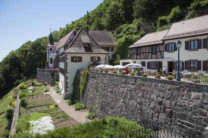 Panoramaweb_ Schauenberg, Pfaffenheim, Canton de Rouffach, Haut-Rhin, Alsace